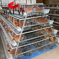 Layer Chicken Battery Cage