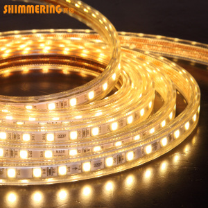 Waterproof IP65 PVC Flex Back lighting AC220V SMD5050 led light hose