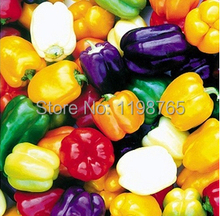 30pcs 6 Color Yellow Puple Red Green Blue White Mix Sweet Bell Hot Pepper Seeds vegetables Paprika
