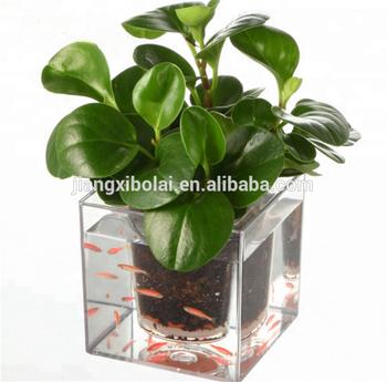 Kristal Kubus Pot Hidroponik Taman Bunga Pot Ikan Pot Buy Kristal Kubus Pot Taman Hidroponik Pot Bunga Ikan Pot Product On Alibaba Com