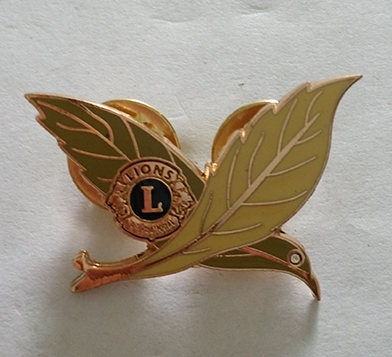custom high quality gold plated lapel pin
