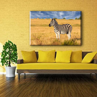Home decor zebra picture wild animal canvas boards painting