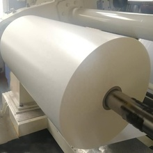 Fabriek Poly Gecoat Kraft Papier In Roll