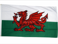 Hot selling Wales Dragon 3x5ft country flag