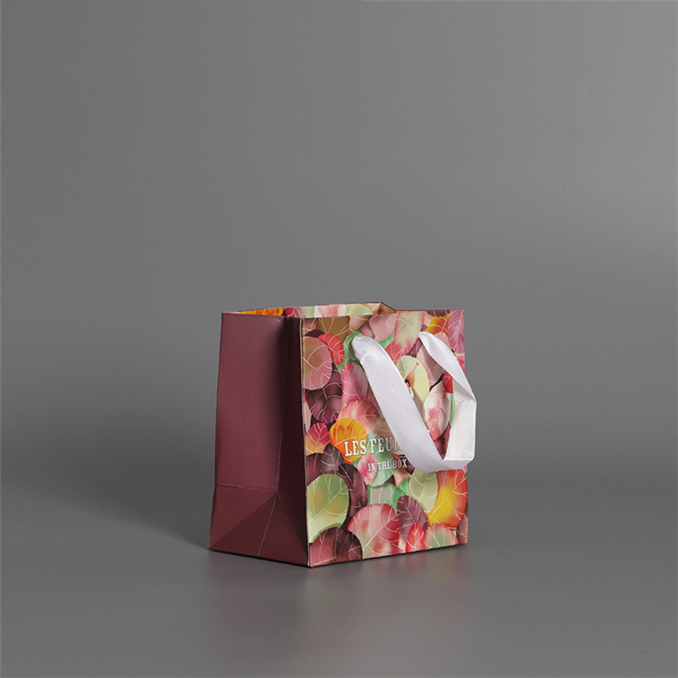 Custom Luxury Retail Paper Shopping Bag Color Paper Bag