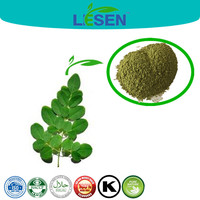 100% Natural Health Product Moringa Oleifera Leaf Extract Powder 5:1 10:1