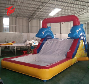 Small Indoor Dolphin water slide 10ft inflatable water slide for kids