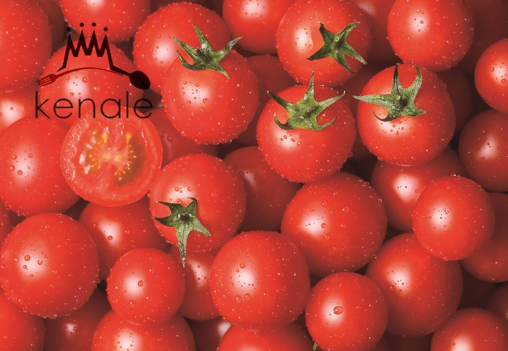 gino tomato paste factory bulk price tomato paste for nigeria 800g*12tins