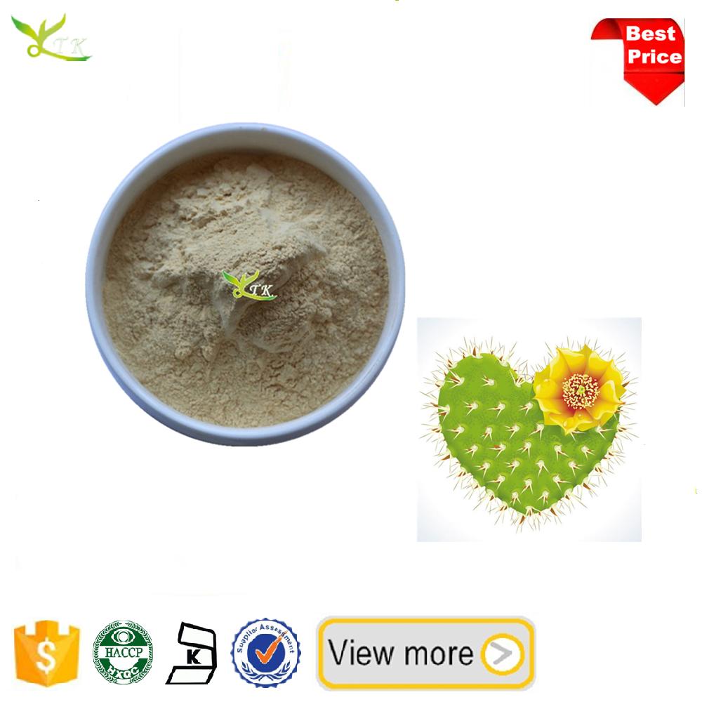 Kosher Hoodia Gordonii Cactus Extract Buy Hoodia Gordonii