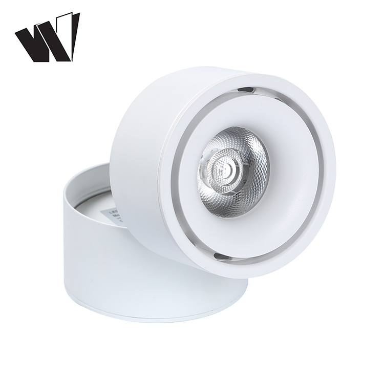 New design brand chip aluminum body COB  9w 12w rotatable led ceiling lamp
