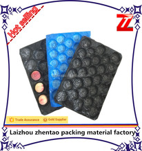 2016 hot selling environmental PP plastic perforated fruit tray