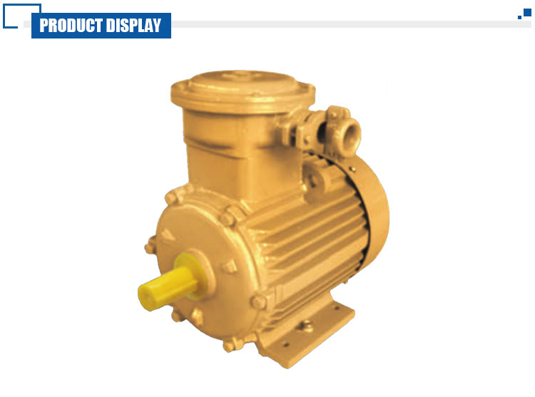 Explosion Proof 132KW Speed 1480 Asynchronous Motor