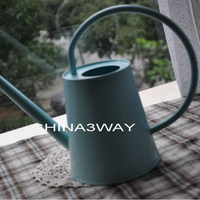 Galvanized indoor zinc Watering Can