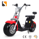 Electric Fashion Fat Tire Scooter Razor Scooter 48V 800 W with E-bike Tool (Red)