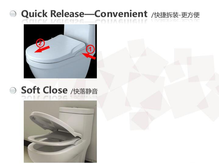 Watermark D Shape Toilet Seat With Integrated Bidet
