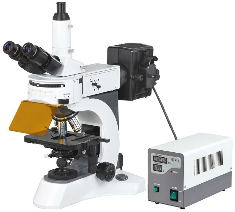 N-800F Laboratory Biological Fluorescent Microscope