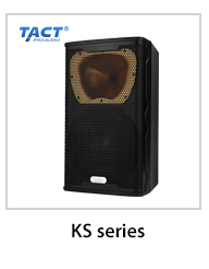 Double 10 inch China High Quality Customization active line array speaker box