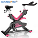 Gym Fitness Equipment Indoor Body Fit exercise bike Magnetic Bike Trainer with 4 Way Adjustable Seat