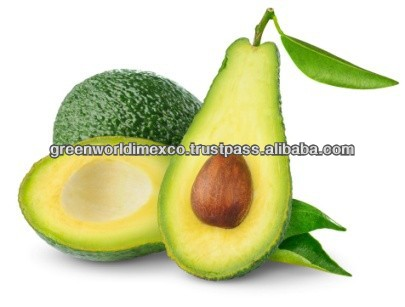 AVOCADO WITH GOOD PRICE AND QUALITY