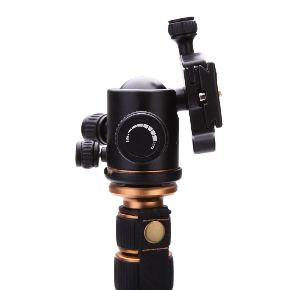 Lightweight Portable Q666 Q666c Professional Travel Camera Tripod Beike Qzsd 02 Pro Carbon Fiber For Slr