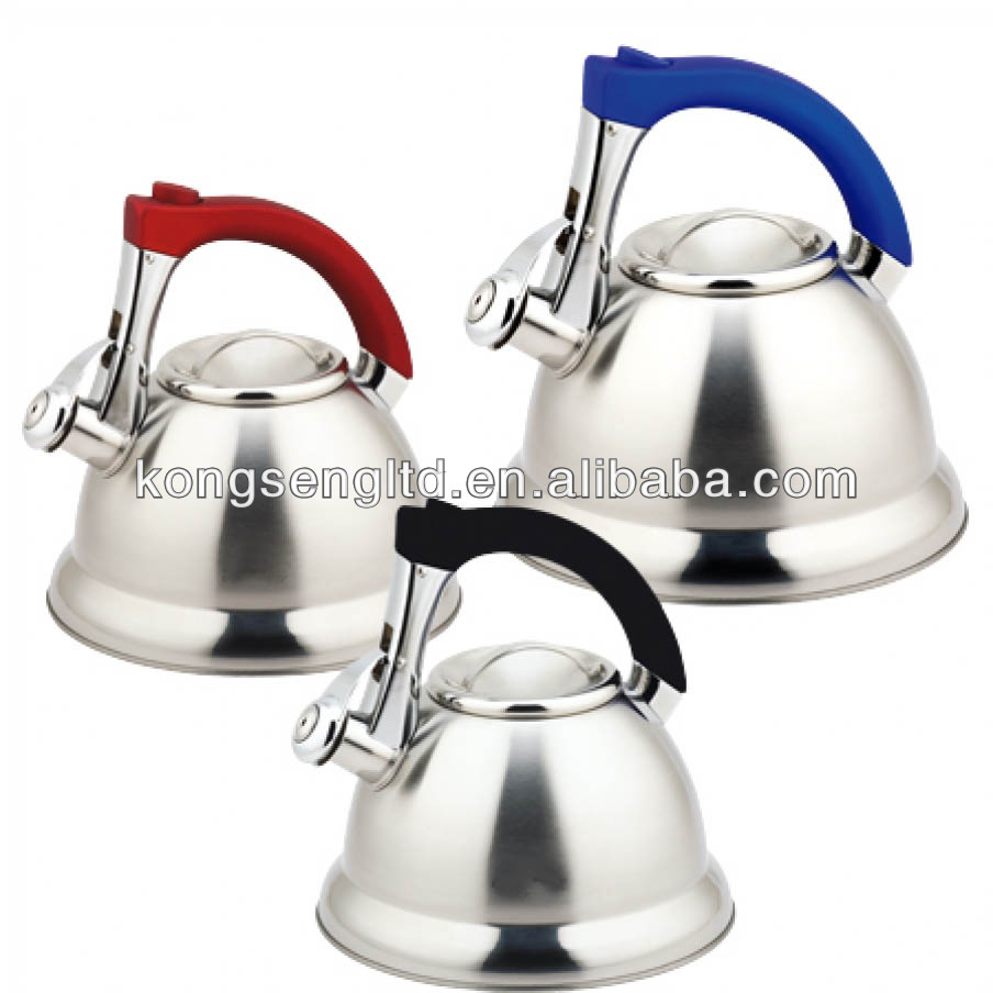Stainless steel tea kettle/tea kettle