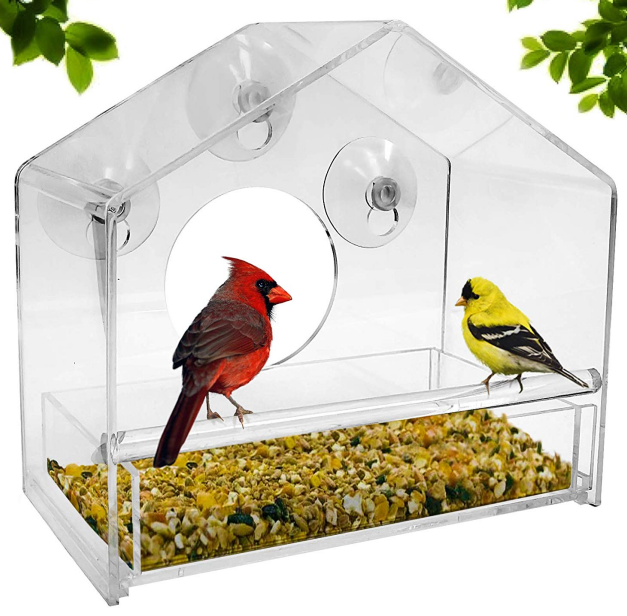 Acrylic Squirrel Proof Window Bird Feeder