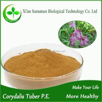 Hot selling Corydalis Yanhusuo Extract/Corydalis Ambigua extract powder