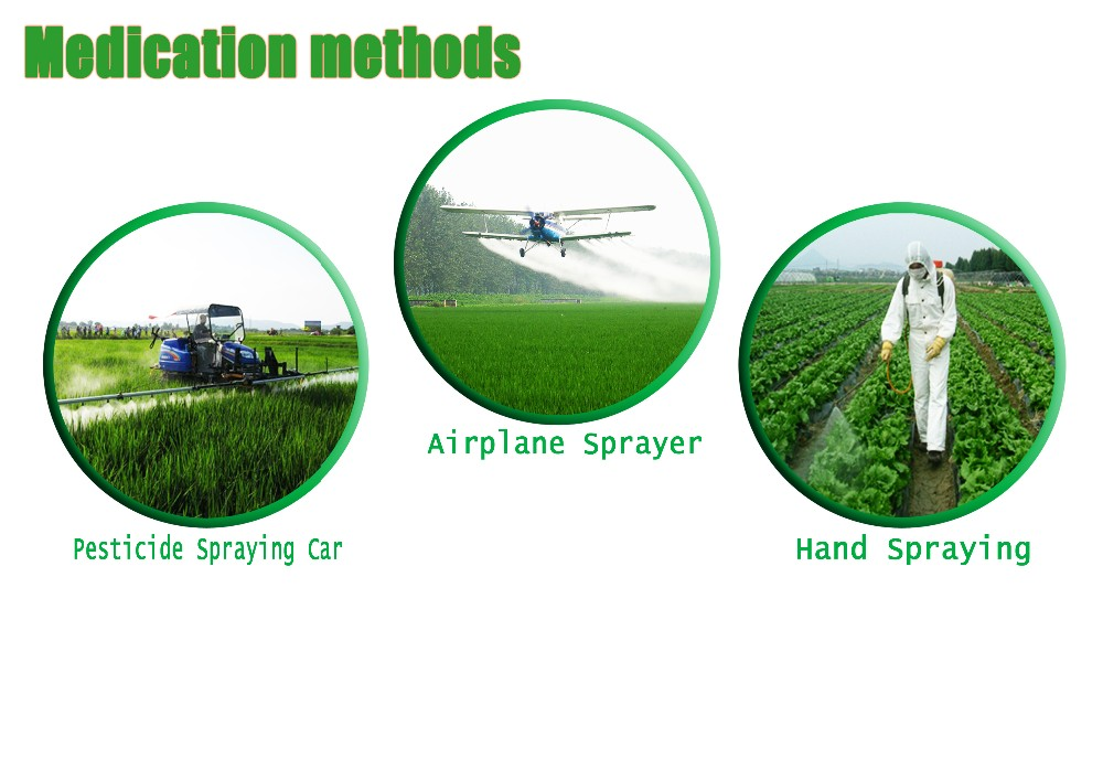 china nematicide insecticide Abamectin/Avermectin 1.8%ECfor paddy rice