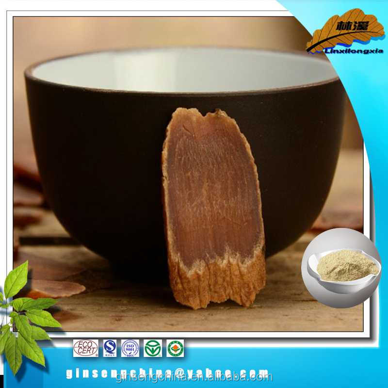 Low Pesticide dried red ginseng powder extract best sell