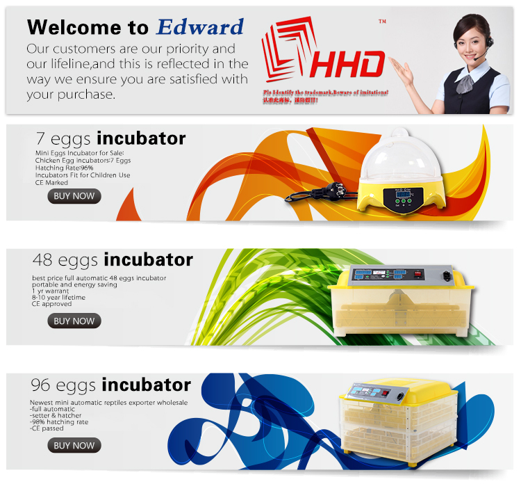HHD EW9-7 Classical Hot selling model in USA mini type egg incubator /for incubator spare parts