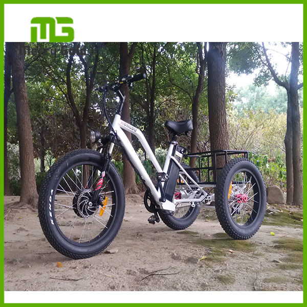 3 Wheel Electric Bike 3 Wheel Electric Bike Suppliers And
