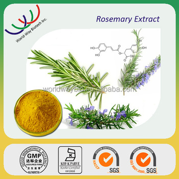 Haccp Kosher Fda Supplier Advantage Suppliment Rosemary Extract ...