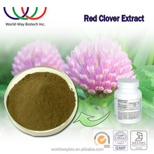 Red clover extract free sample dietary supplement anti-cancer 8% isoflavone Trifolium pratense extract