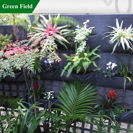 Green Field Green Walls,Vertical Garden Solutions Creating Green Vertical  Walls   Buy Vertical Garden Solutions Creating Green Vertical Walls,Outdoor  ...