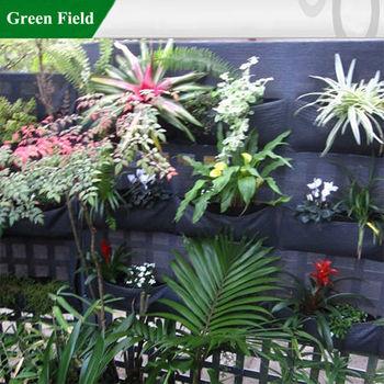 Green Field Green Walls Vertical Garden Solutions Creating
