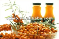 Seabuckthorn fruit oil,berry oil Co2 super critical extract
