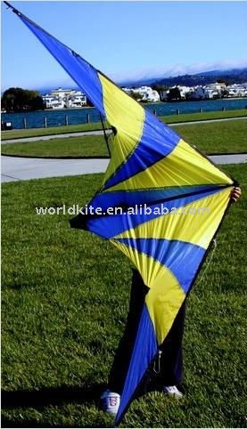 High Performance Stunt Kite_Dual-Line/Gift