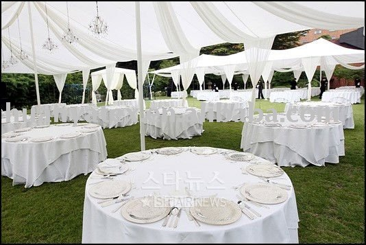 White Organza Fabric For Wedding Decorations