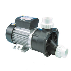 PROWAY Spa Pool Pump Motor 0.75HP Bathtub Water Circulation Pump
