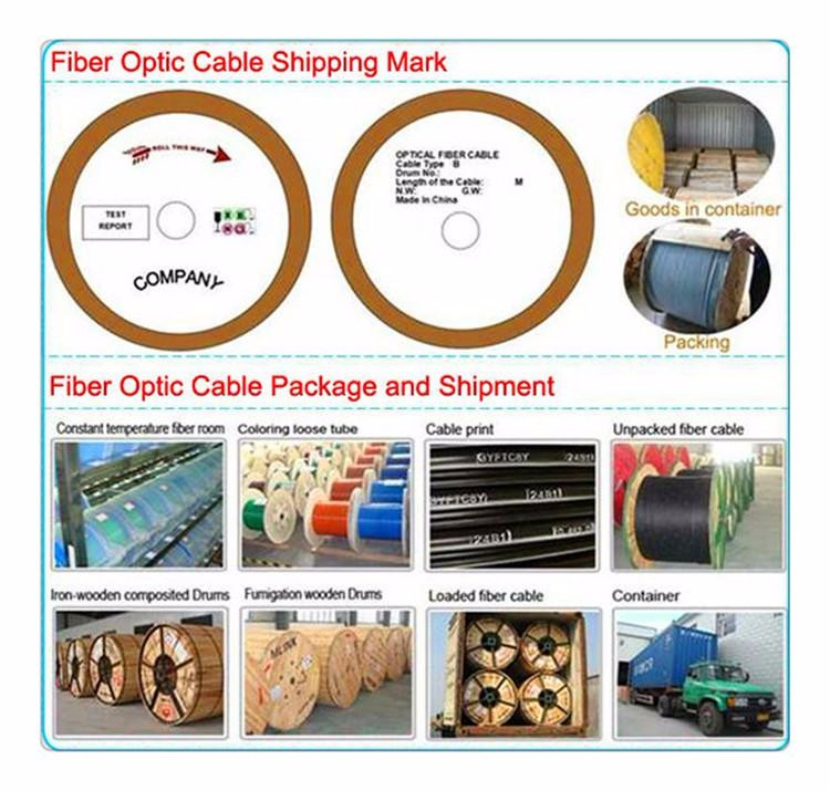 High quality outdoor Fiber Optical cable 2 4 6 8 12core G652D GYXTW Cable