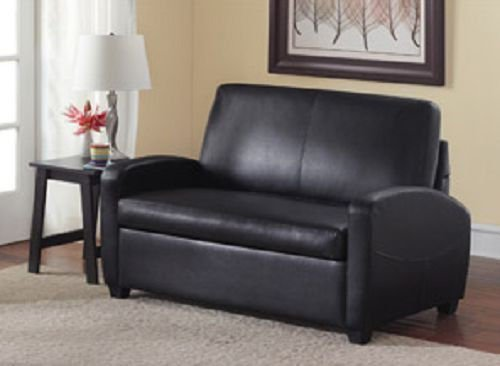 Get Quotations Sofa Sleeper Convertible Couch Loveseat Chair Recliner Futon Black Twin Bed Guest