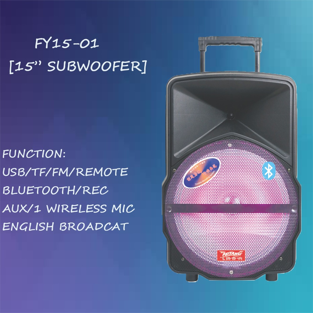 TEMEISHENG/FEIYANG DJ BLUETOOTH SPEAKER 15 INCH POWERED SPEAKER RECHARGEABLE WITH TROLLEY