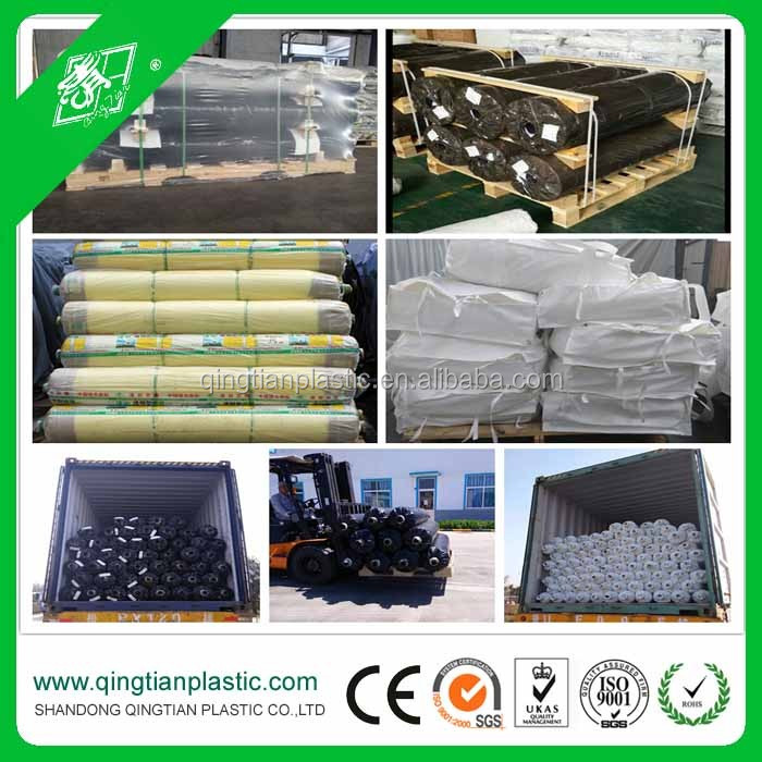 Sun Master 6 Mil 4 Year 55% Greenhouse Film - Buy Greenhouse Film,6 Mil  Greenhouse Film,Sun Master Greenhouse Film Product on Alibaba com