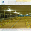 cheap prefabricated house light steel frame building broiler poultry farm industrial design
