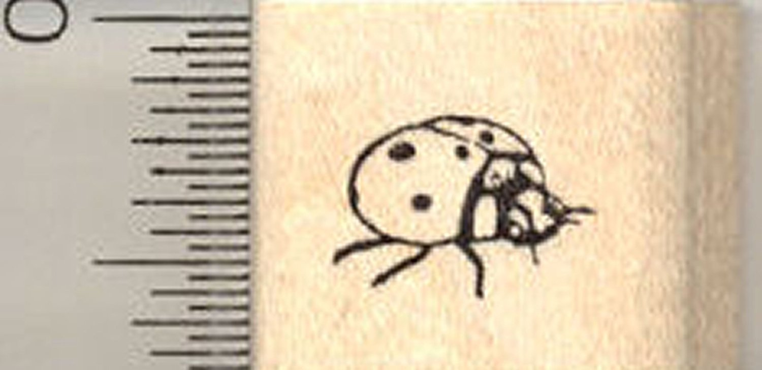 Get Quotations Ladybug Rubber Stamp Ladybird Beetle Side View