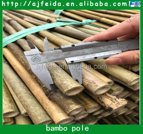 FD-18319 bamboo plant support stick bamboo poles bamboo canes for sale
