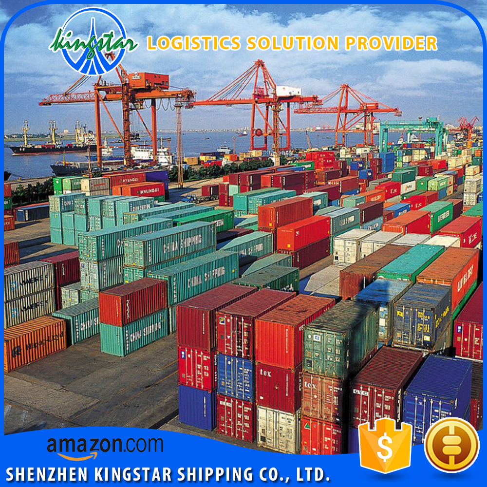 Professional FCL Shipping and Cheap Ocean Freight to Kawasaki Japan from Shanghai/Shenzhen/Guangzhou/Ningbo/Qingdao