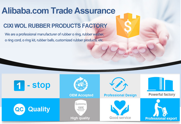 Custom Nitrile FPM Silicone Rubber Diaphragm for Valves Pump