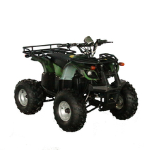 2017 hot selling cheap price 1200w electric ATV quad bike