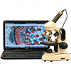 AmScope Supplies 40X-1000X Cordless LED Top & Bottom Lights Compound Microscope + 1.3MP Camera
